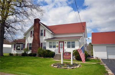Alexandria Single Family Home For Sale: 47649 County Route 1