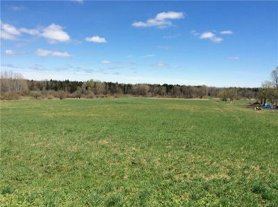Holland Patent Residential Lots & Land A-Active: Whitaker Road