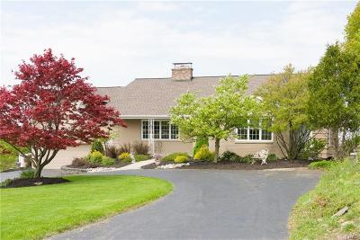 Syracuse Single Family Home For Sale: 413 Brookford Road