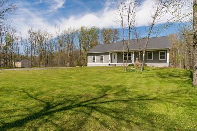 Brownville Single Family Home For Sale: 17135 Nys Route 12e