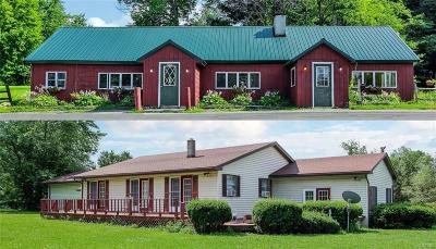 Sempronius Single Family Home For Sale: 2630 State Route 41a