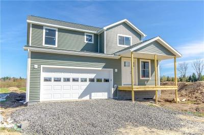 Theresa Single Family Home For Sale: 35662 Co Route 136