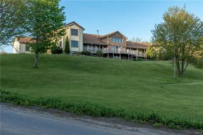 Herkimer, Ilion, Little Falls, Mohawk, Schuyler Single Family Home For Sale: 150 Cook Hill Road