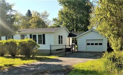 Cape Vincent Single Family Home For Sale: 152 W Lake Street