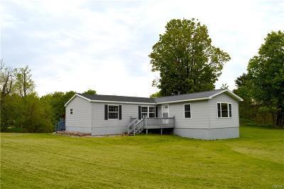 Alexandria Single Family Home For Sale: 29207 Lake View Drive