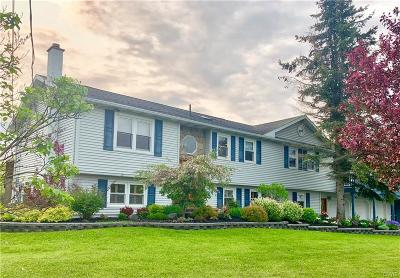Jefferson County, Lewis County Single Family Home For Sale: 25876 Nys Route 12