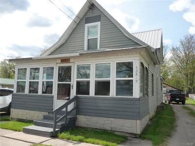Single Family Home For Sale: 42819 County Route 100