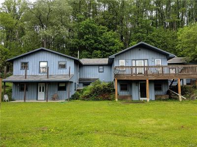 Single Family Home For Sale: 6373 State Route 91