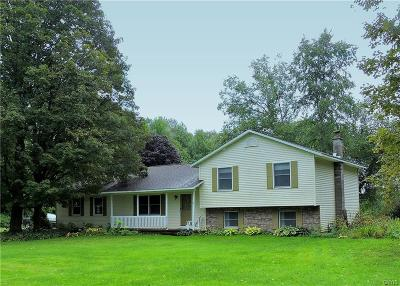 Holland Patent Single Family Home For Sale: 9388 Nys Route 365