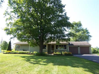 Vernon Single Family Home For Sale: 5052 State Route 5