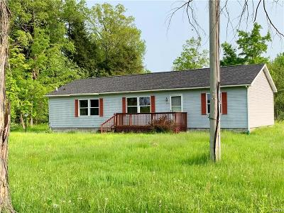 Rome Single Family Home A-Active: 6366 Dix Road