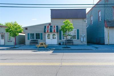 Jefferson County, Lewis County, St Lawrence County Commercial For Sale: 12113 State Route 12e