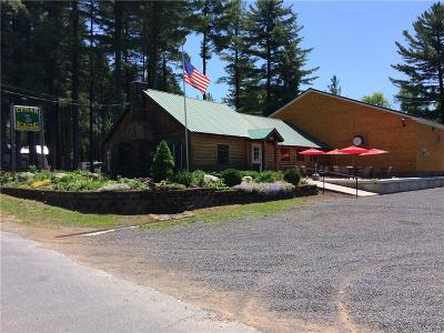 Jefferson County, Lewis County, St Lawrence County Commercial For Sale: 1132 Comins Road