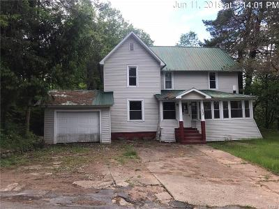 St Lawrence County Single Family Home For Sale: 500 Oswegatchie Trail Road