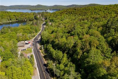 Forestport Residential Lots & Land For Sale: 00 Nys Route 28