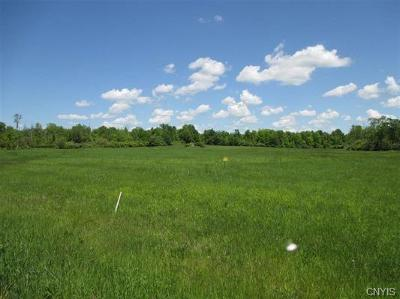 Residential Lots & Land For Sale: 00 Ideauma