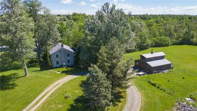 Single Family Home For Sale: 30724 Nys Route 180