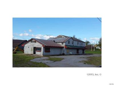 Jefferson County, Lewis County, St Lawrence County Commercial For Sale: 6722 Nys Route 12e