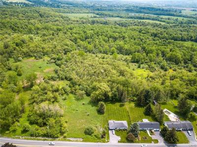 New Hartford Residential Lots & Land For Sale: 9522 Chapman Road
