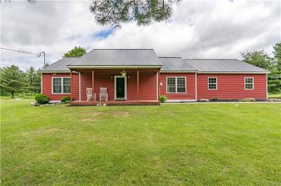 Rutland Single Family Home For Sale: 31361 County Route 143
