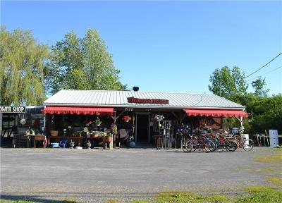 Jefferson County, Lewis County, St Lawrence County Commercial For Sale: 7172 Nys Route 12e