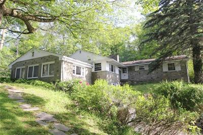 Utica Single Family Home For Sale: 41 Arlington Road