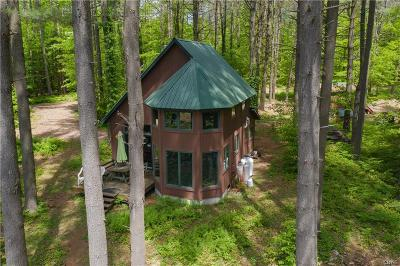 Forestport Single Family Home For Sale: 2206 Lone Pine Lake Road