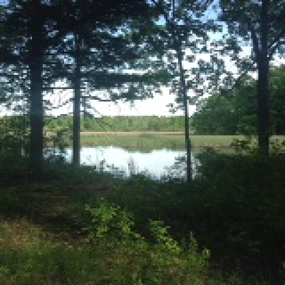 Alexandria Residential Lots & Land For Sale: 45649 Deer Point Road