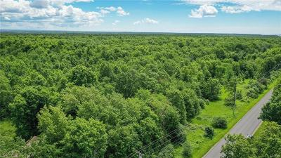 Residential Lots & Land For Sale: Co Route 179