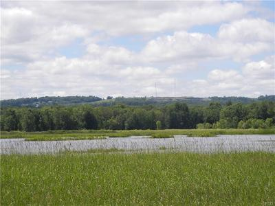 Jefferson County, Lewis County, St Lawrence County Residential Lots & Land For Sale: 00 Ridge Road