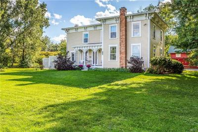 Niles Single Family Home For Sale: 4699 State Route 41a