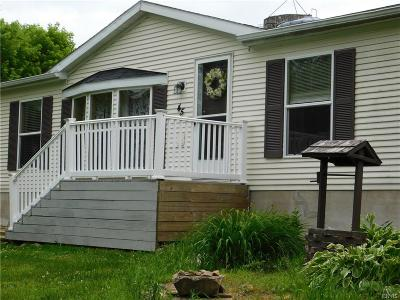 Mexico Single Family Home For Sale: 45 Minckler Road