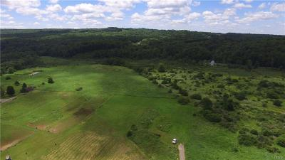 Boonville Residential Lots & Land For Sale: 12335 State Route 46