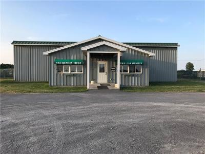 Jefferson County, Lewis County, St Lawrence County Commercial For Sale: 12865 State Route 12e