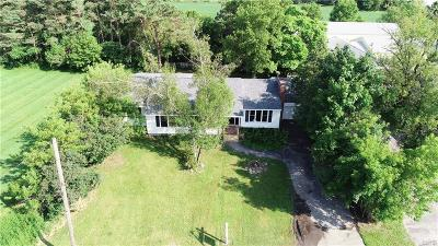 Holland Patent Single Family Home For Sale: 9592 Main Street