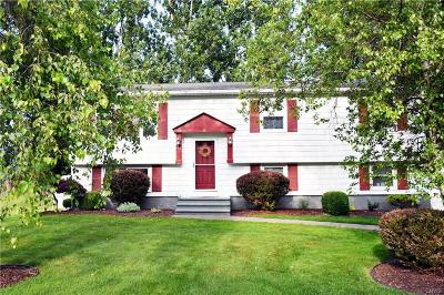 New Hartford Single Family Home For Sale: 3 Meadowbrook Drive