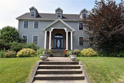 Herkimer, Ilion, Little Falls, Mohawk, Schuyler Single Family Home For Sale: 1291 Steuben Hill Road