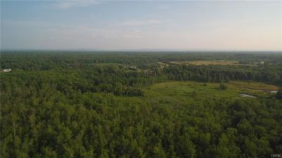 Residential Lots & Land For Sale: Route 49