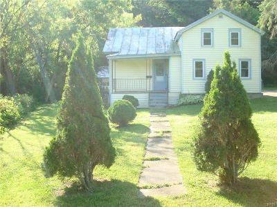 Single Family Home For Sale: 32366 County Route 179