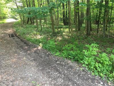 Forestport Residential Lots & Land For Sale: 200 Little Beaver Rd Drive