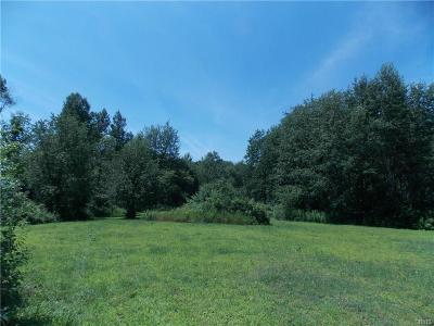 Watertown-Town NY Residential Lots & Land For Sale: $90,000