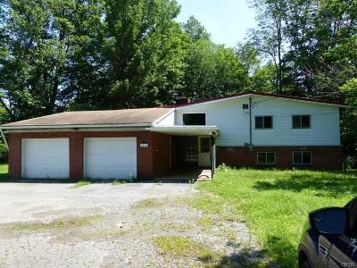 Remsen Single Family Home For Sale: 9216 State Rt 12 Highway