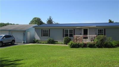 Jefferson County, Lewis County Single Family Home For Sale: 17295 County Route 76