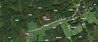 Remsen, Forestport, Barneveld, Boonville, Old Forge, Woodgate, West Leyden, Holland Patent Residential Lots & Land For Sale: 00 Commons Road