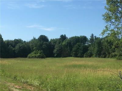 Wilna NY Residential Lots & Land For Sale: $7,800