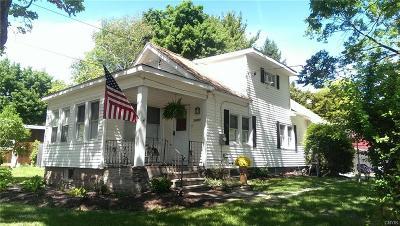 Syracuse Single Family Home For Sale: 1223 Jamesville Avenue