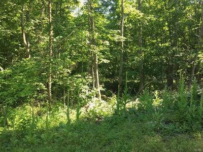 St Lawrence County Residential Lots & Land For Sale: 5b Osborne Road