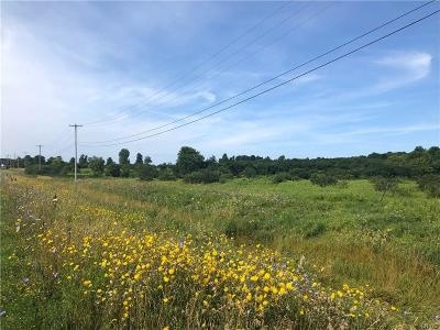 Residential Lots & Land For Sale: Us Route 11