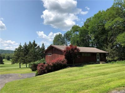 Hamilton Single Family Home For Sale: 2089 Spring Street