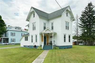 Theresa Single Family Home For Sale: 102 High Street